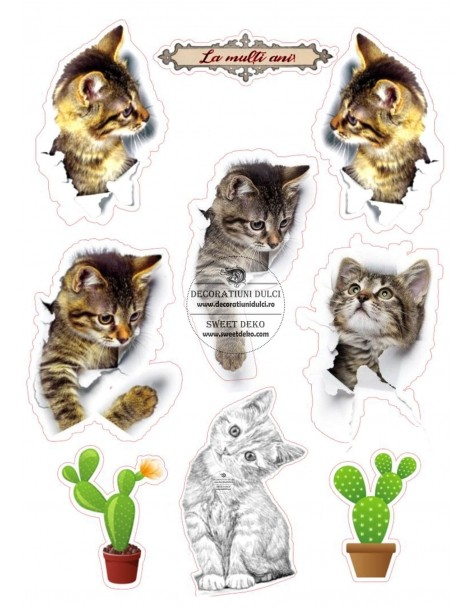 Edible Image Playful Kittens