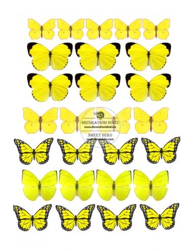 Imagine comestibila Fluturi galbeni