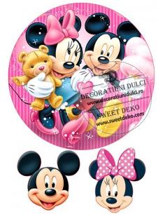 Mickey and Minnie edible...