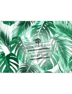 Image edible tropical foliage
