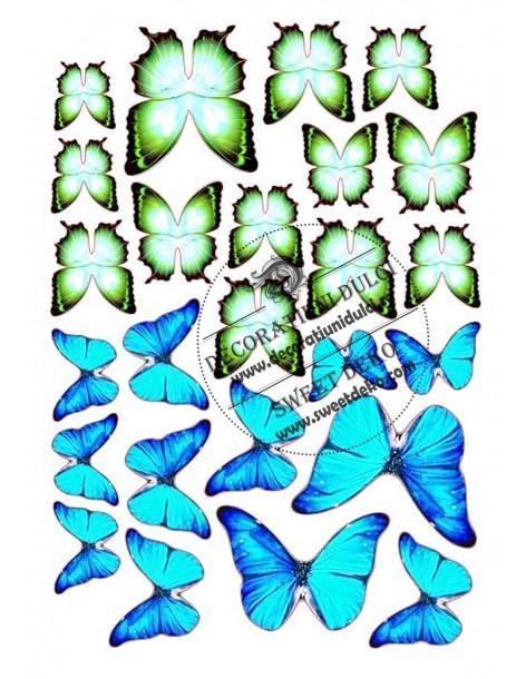 Image edible blue green...