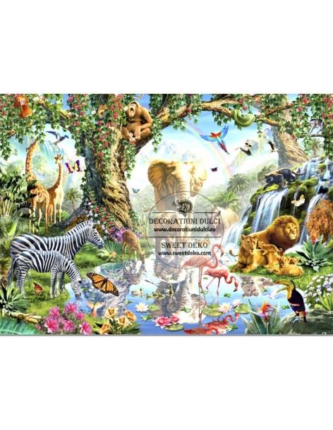 Image edible Animal Land