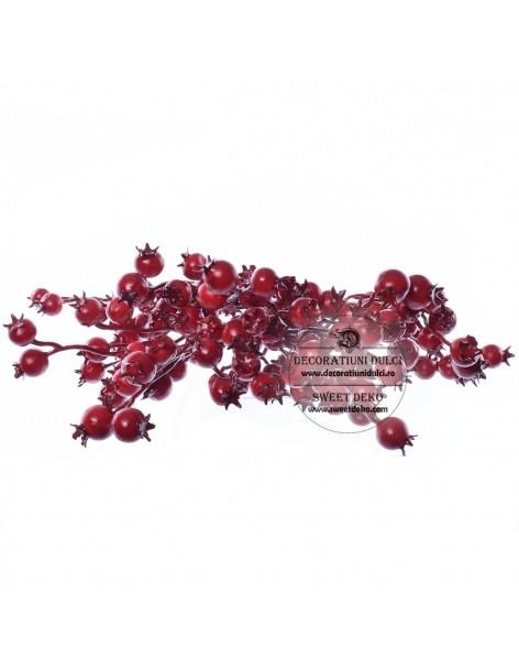 Cranberries, dcarrative...